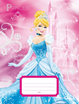 Exercise book 524 Princess