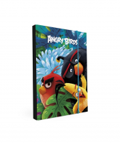 Heft box A4 Angry Birds Movie